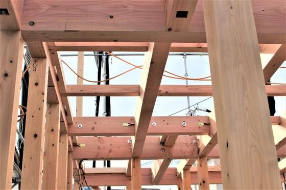 木工事・・・上棟しました